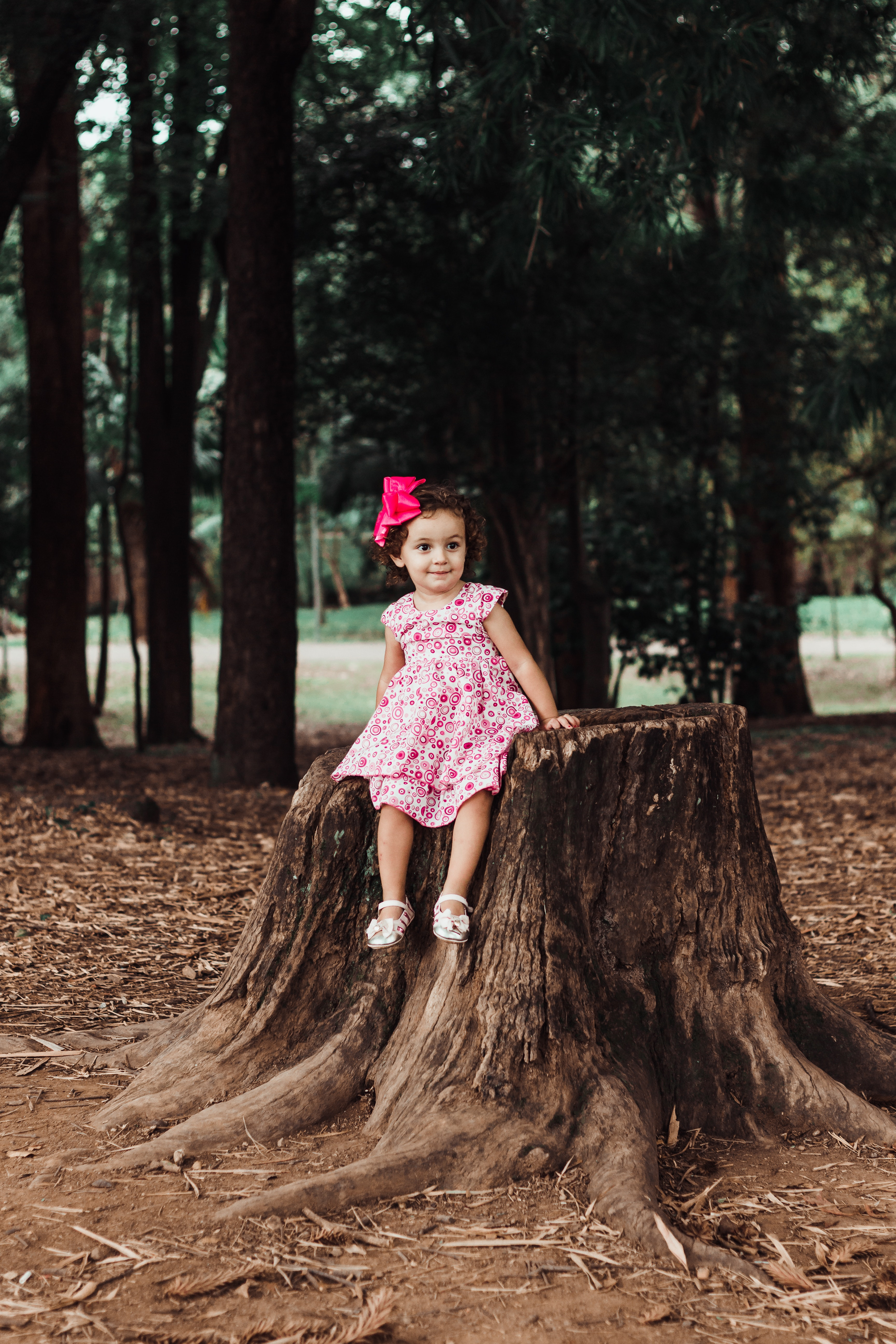 a little cute girl sitting on the tree wearing pink dress