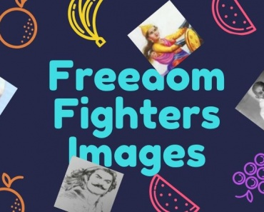 Freedom Fighters images