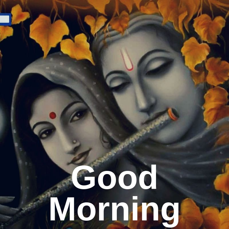 Good Morning Radhe Krishna dp