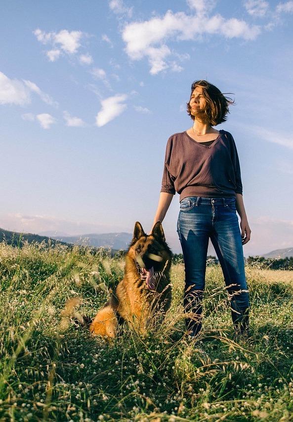 german shepherd with girl