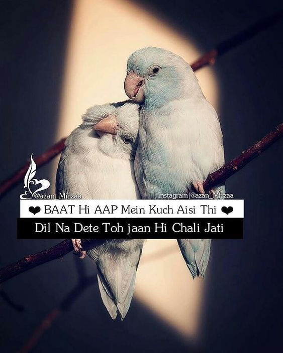 love quote with Quote in hindi