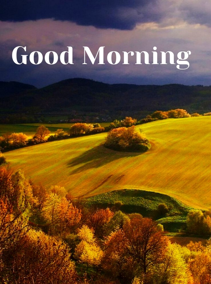good morning images in HD