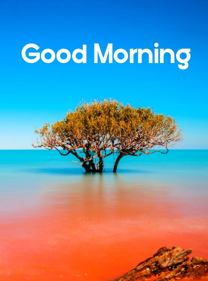 good morning with nature images