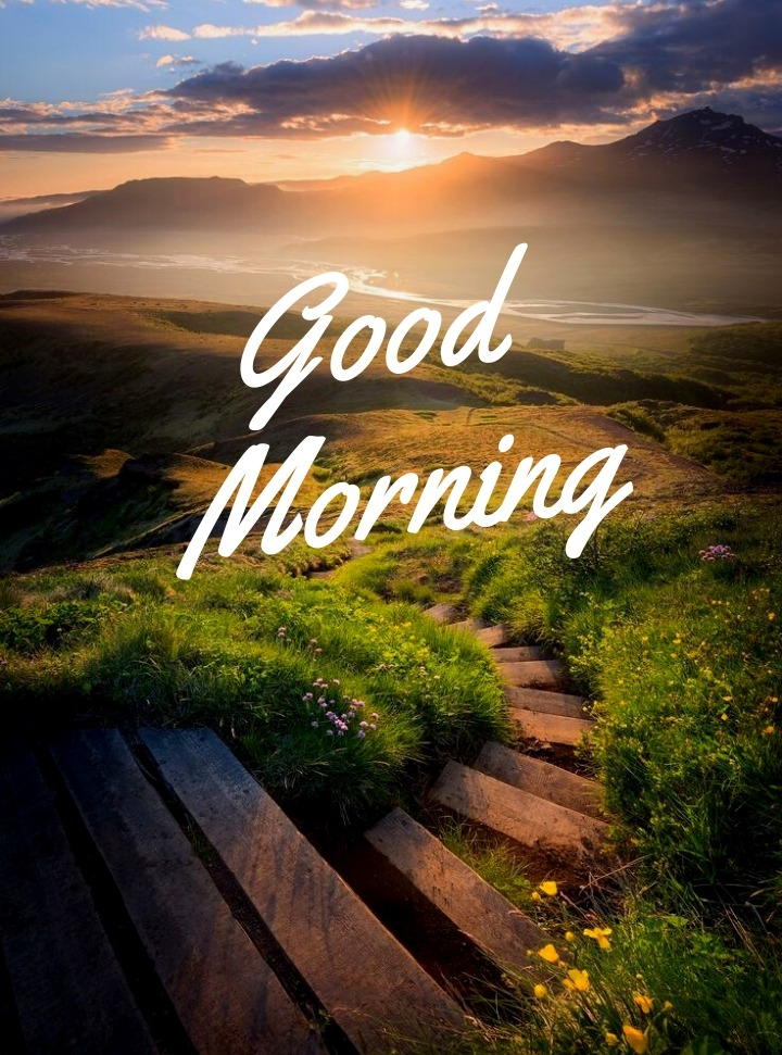 good morning images in nature