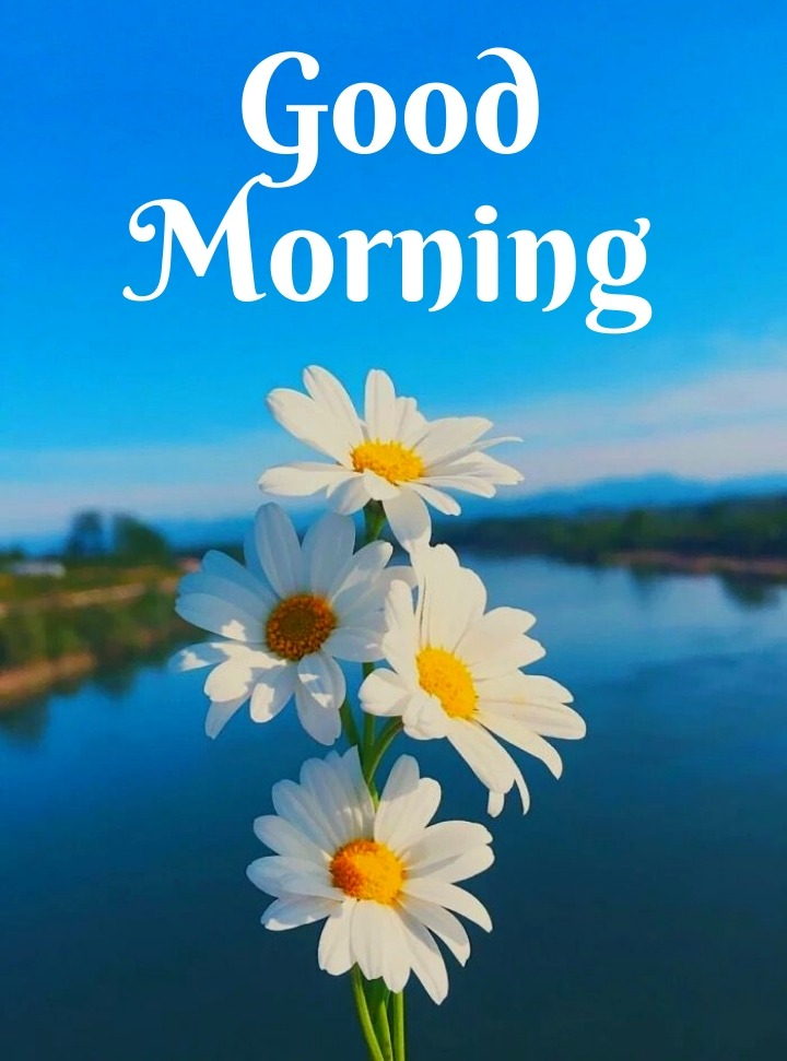 good morning images with nature English