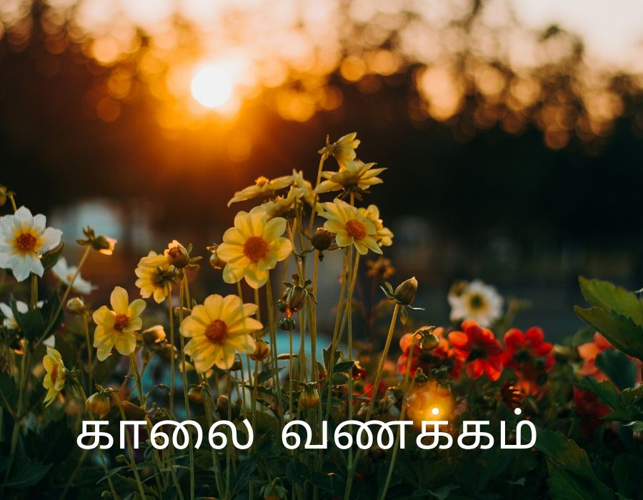 Good Morning Images in Tamil