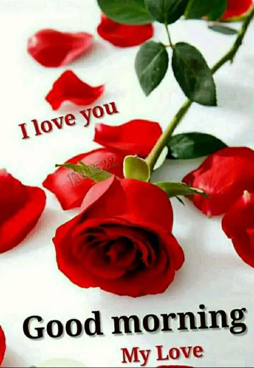 Good morning love images HD