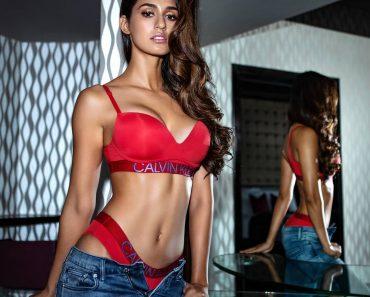 Sexy Disha Patani Wallpaper Photo Download