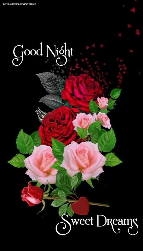 Good night image for her rose image