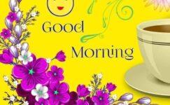 Amazing Good Morning Quotes Status Download Free