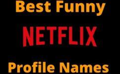 Best Funny NetFlix Profile Names 2020