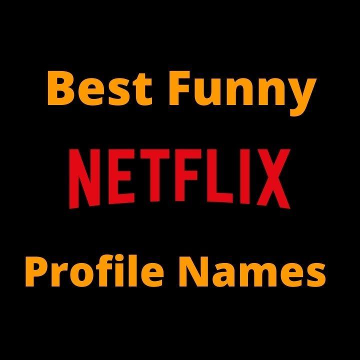 Best Funny Netflix profile names
