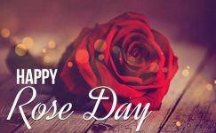 Happy Rose Day 2021 Images & photos Free Download