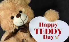 Happy Teddy Day 2021 Images & Photos Free Download
