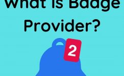 What is Badge Provider?